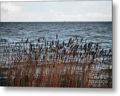 Metallic Sea Metal Print