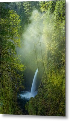 Metal Print featuring the photograph Metlako Falls Dressed In Fog by Patricia Davidson