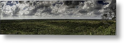 Mexican Jungle Panoramic Metal Print by Jason Moynihan