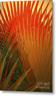 Mexican Palm Metal Print by Gwyn Newcombe
