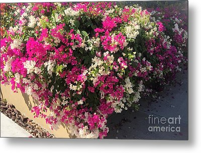 Metal Print featuring the photograph Mexico Memories 4 by Victor K