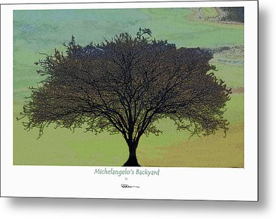 Michelangelo's Backyard Metal Print