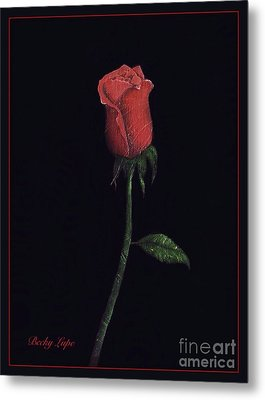 The Perfect Rose 2 Metal Print by Becky Lupe