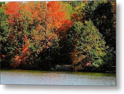 Michigan Fall Colors 5  Metal Print by Scott Hovind