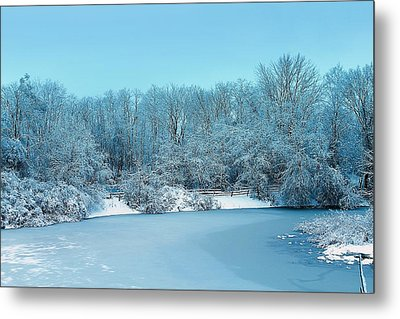 Michigan Winter 6 Metal Print by Scott Hovind