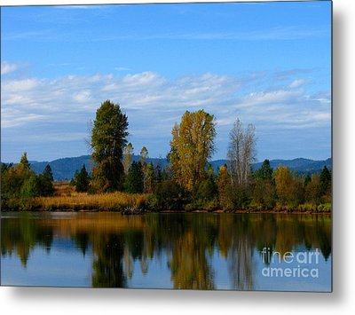 Mid Morning Coffee Metal Print by Greg Patzer