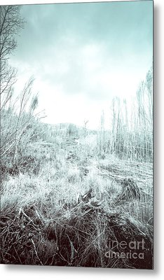 Middle Of Snowhere Metal Print by Jorgo Photography - Wall Art Gallery
