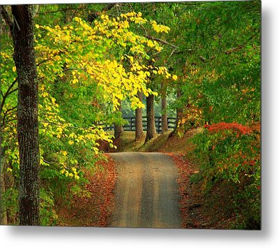 Middleburg Road Metal Print