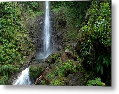 Middleham Waterfall In Dominica Metal Print by Tropical Ties Dominica