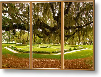 Metal Print featuring the photograph Middleton Gardens Triptych by Bill Barber