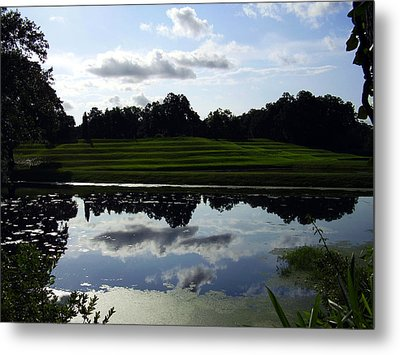 Middleton Place II Metal Print by Flavia Westerwelle