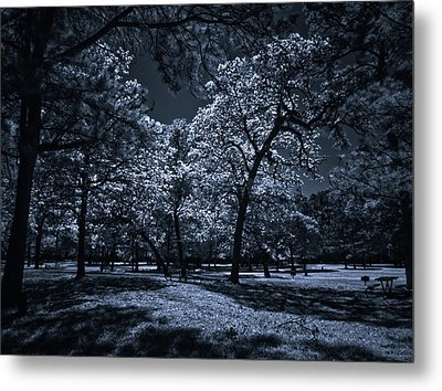 Metal Print featuring the photograph Midnight Blues by Linda Unger