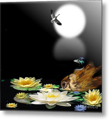 Midnight Serenity Metal Print by Belinda Threeths