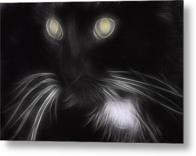 Mikey Metal Print by Holly Ethan
