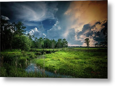 Milk And Honey Metal Print by Marvin Spates