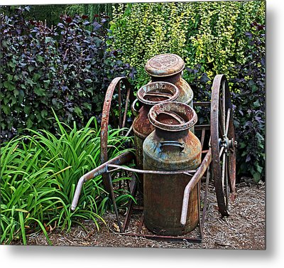 Metal Print featuring the photograph Milk Pails by Judy Vincent