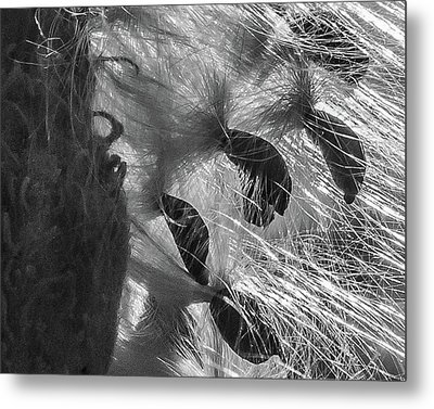 Milkweed Sunburst In Black And White Metal Print