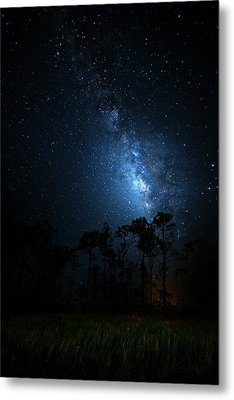 Metal Print featuring the photograph Milky Way At Big Cypress National Preserve by Mark Andrew Thomas