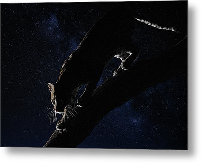Metal Print featuring the photograph Milky Way Ocelot by Wade Aiken