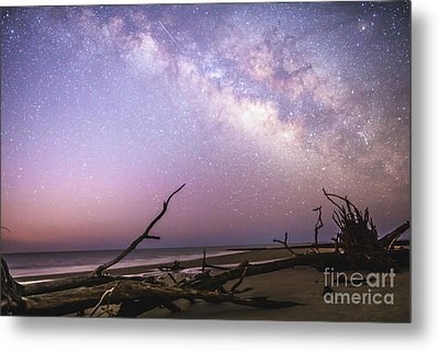 Milky Way Roots Metal Print