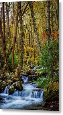 Mill Creek In Fall #1 Metal Print