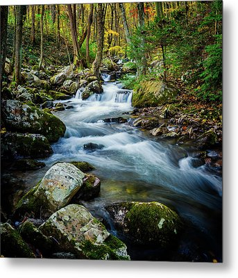 Mill Creek In Fall #3 Metal Print