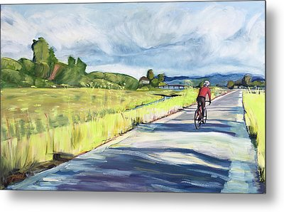 Mill Valley Bike Path Metal Print by Colleen Proppe