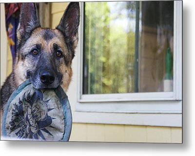 Millie Metal Print by Lois Lepisto