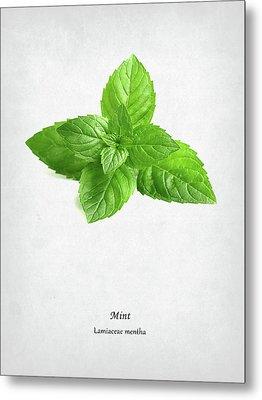 Mint Metal Print