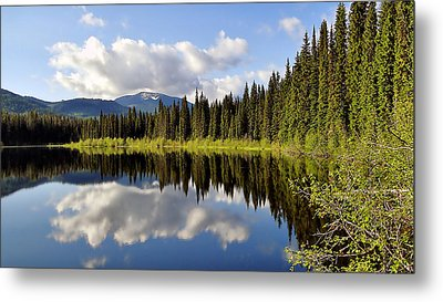 Metal Print featuring the photograph Mirror Image by Blair Wainman