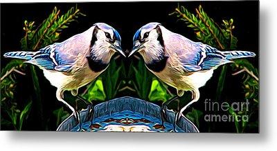 Mirrored Bird Series Blue Jays Expressionist Effect Metal Print