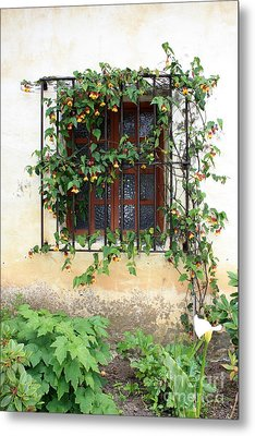 Mission Window With Yellow Flowers Vertical Metal Print by Carol Groenen