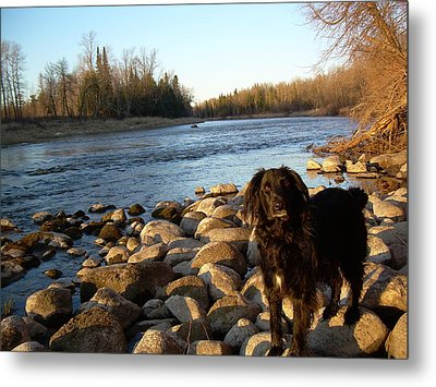 Metal Print featuring the photograph Mississippi River Good Morning by Kent Lorentzen