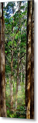 Mist In The Forest Metal Print by Az Jackson