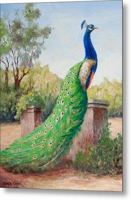Mister Peacock Metal Print