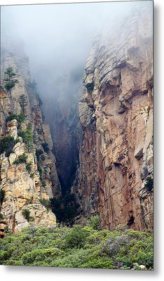 Metal Print featuring the photograph Misty Canyons by Phyllis Denton