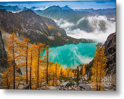 Misty Enchantments Metal Print