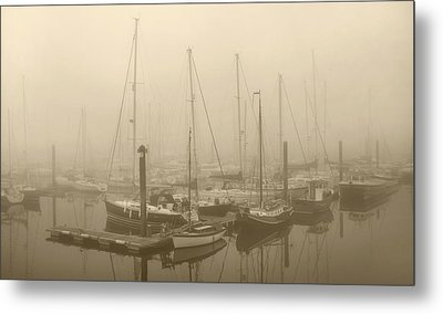 Misty Harbour Metal Print by Terence Davis