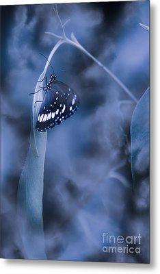 Misty Moonlight Butterfly In Blue Twilight Forest Metal Print by Jorgo Photography - Wall Art Gallery