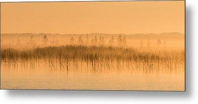 Misty Morning Floating Bog Island On Boy Lake Metal Print