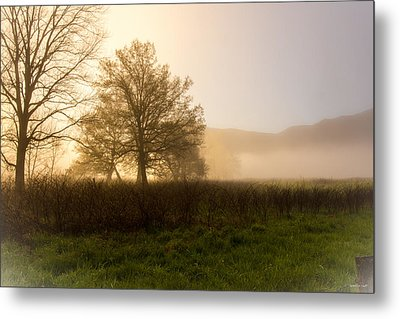 Misty Morning Metal Print by Rebecca Hiatt