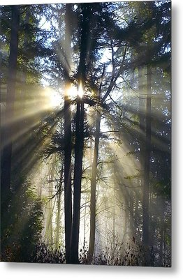 Misty Morning Sunrise Colorful Metal Print by Crista Forest