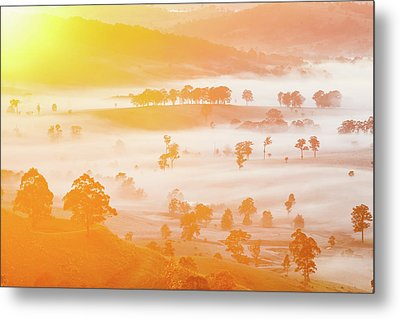 Misty Mornings Metal Print by Az Jackson