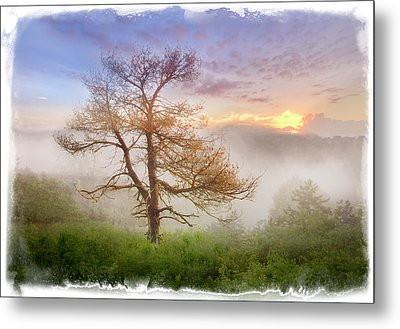 Misty Mountain Metal Print by Debra and Dave Vanderlaan