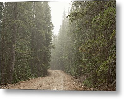 Metal Print featuring the photograph Misty Road by James BO Insogna