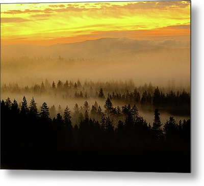 Metal Print featuring the photograph Misty Sunrise by Ben Upham III