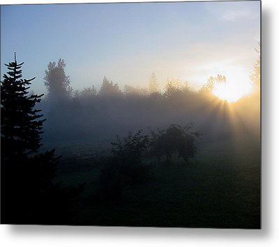 Misty Sunrise Metal Print by Shirley Heyn