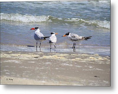 Moe And Larry And Curlie Metal Print by Roena King