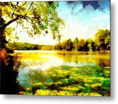 Metal Print featuring the painting Mohegan Lake Hidden Oasis by Derek Gedney