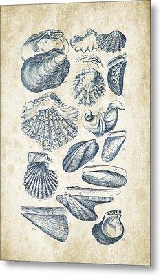 Mollusks - 1842 - 09 Metal Print